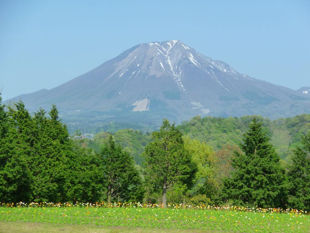 ぜひ訪れたい「花の丘」