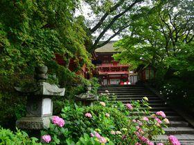 約1000株のあじさいが咲く「奈良県・談山神社」は新緑のパワースポット