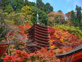 奈良・桜と紅葉の名所!多武峰「談山神社」は大化の改新発祥地