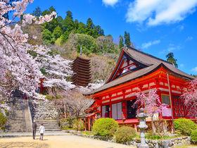 紅葉だけじゃない!奈良・多武峰「談山神社」は桜も美しい