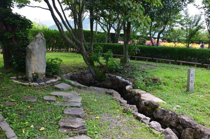 ゆり園の名前の由来は篠山城下の井戸水の水源地