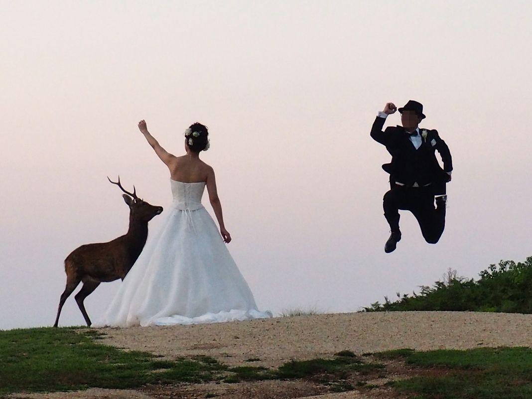 若草山は結婚式の前撮りの絶好の撮影ロケーション
