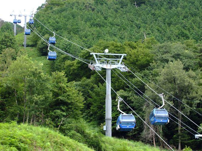 まずはゴンドラとリフトを乗り継いで山頂を目指そう