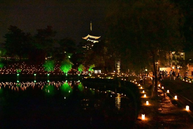 「興福寺」エリアでは、東金堂と国宝館の夜間拝観も