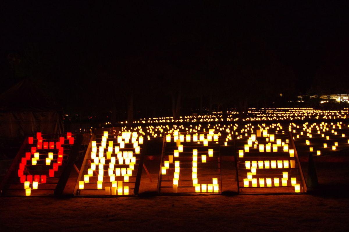 奈良公園の夏の風物詩「なら燈花会」で真夏の夜を満喫しよう!
