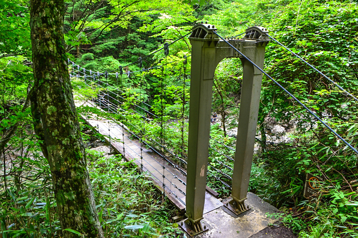 大台ヶ原「東大台ヶ原自然観察路」を歩こう