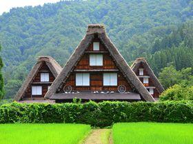 岐阜旅行のおすすめプランは?格安で旅行するコツや見どころなどをエリア別に紹介!