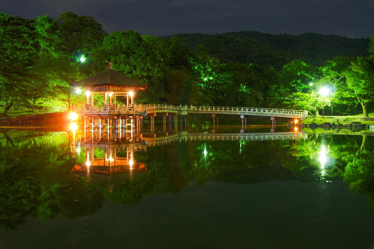 鷺池に浮かぶ「浮見堂」の神秘的な景観