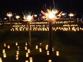 奈良・明日香村の秋の風物詩「飛鳥光の回廊」で幻想空間を満喫!