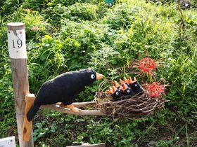 奈良・明日香村で「かかしコンテスト」と「彼岸花祭り」を楽しもう