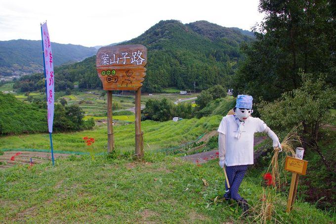 農村の原風景「稲渕の棚田」とは