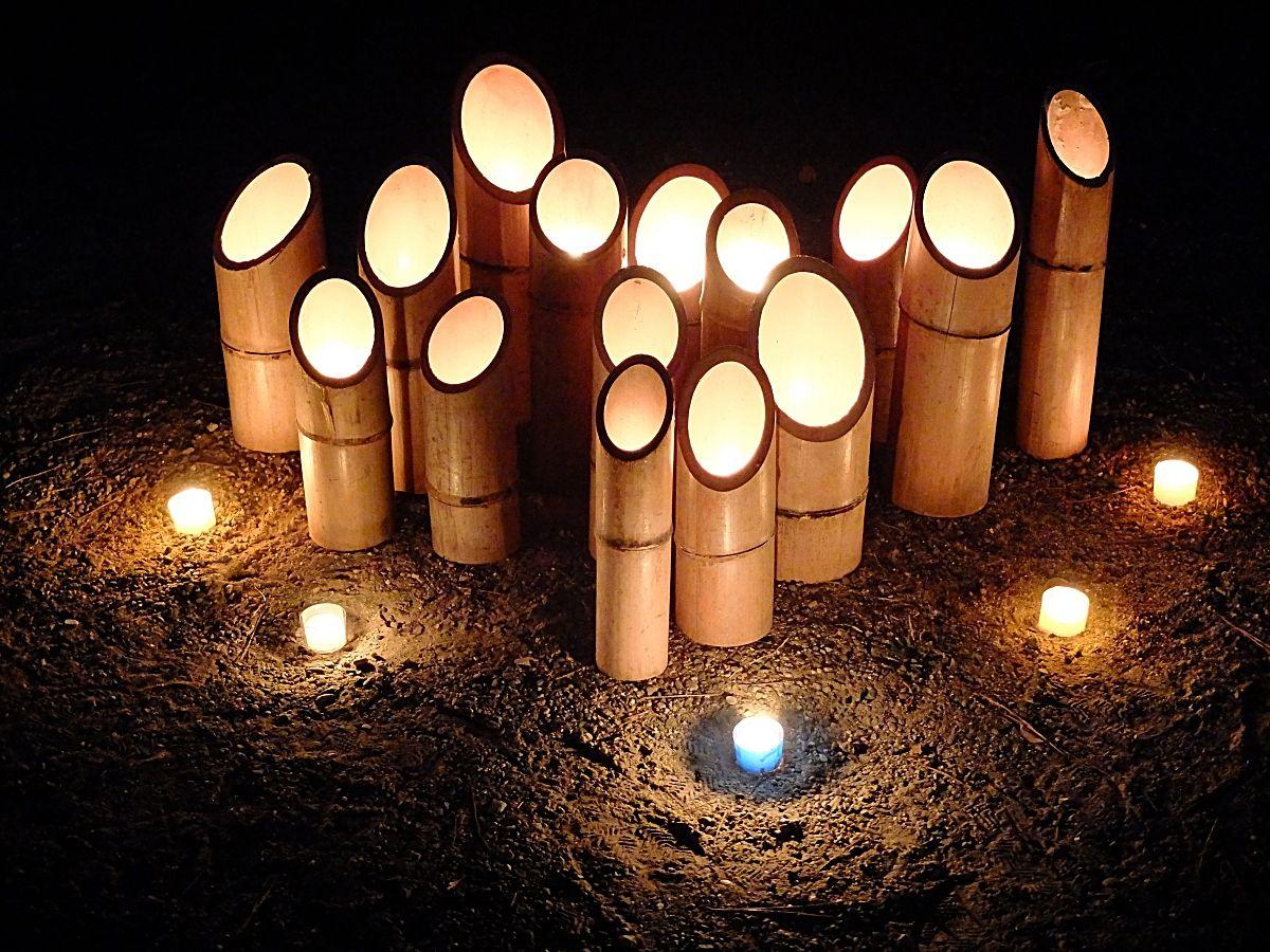 「竹燈夜」のメイン会場「和歌山城」へ行こう!