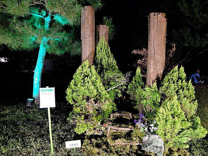 二の丸庭園で「いけばな野外アート展」を鑑賞