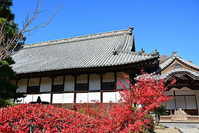 宝福寺の由来の「千尺井」
