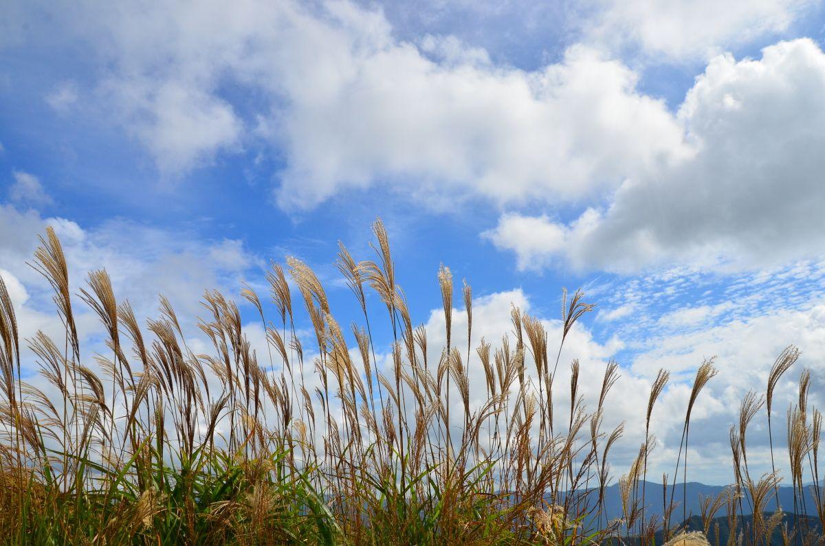 生石高原のオアシス「山の家おいし」