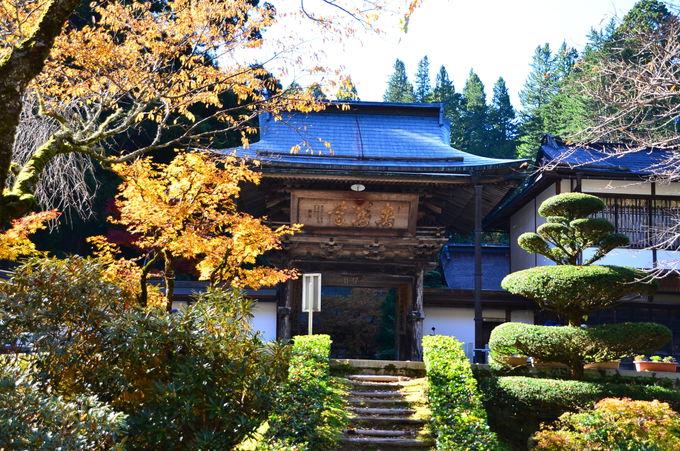 高野山の最古の木造建築物がある「金剛三昧院」の紅葉