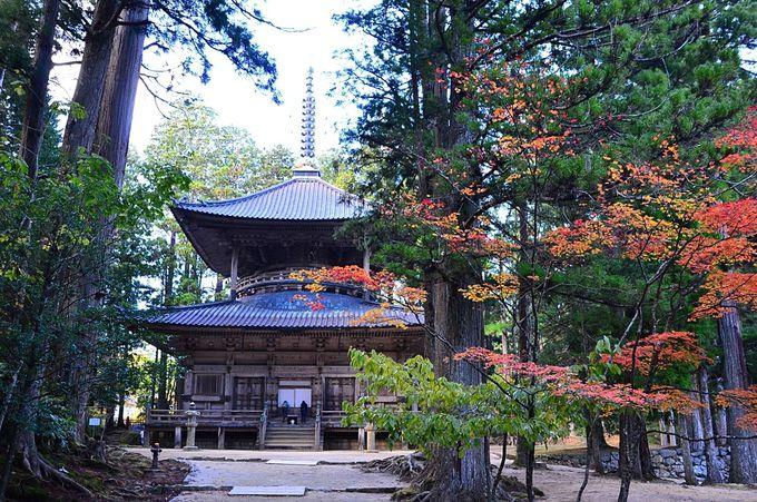 高野山の神仏習合の象徴「御社」