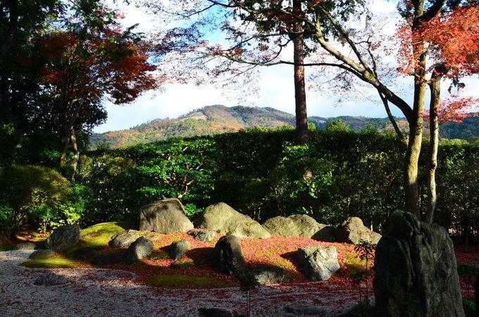 「涅槃の庭」や「隋縁の庭」をのんびりと眺めよう