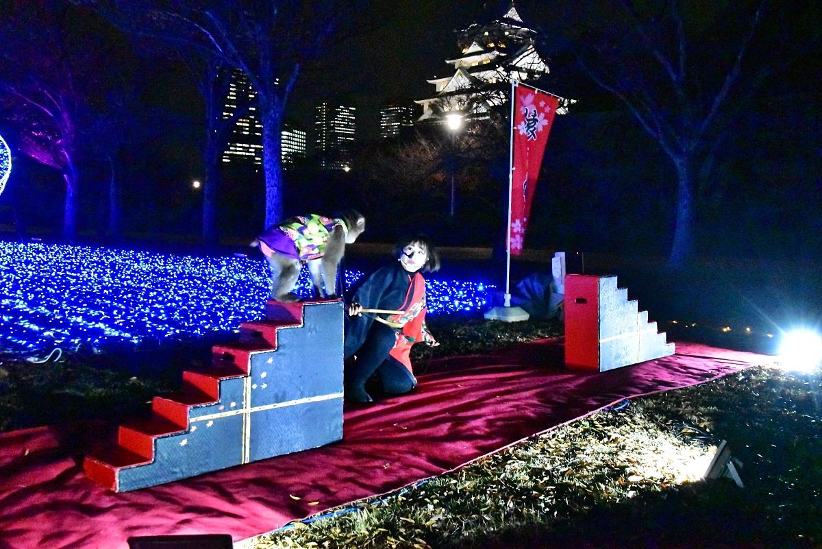 神戸モンキーズの「日本伝統芸能猿まわし」も楽しみたい