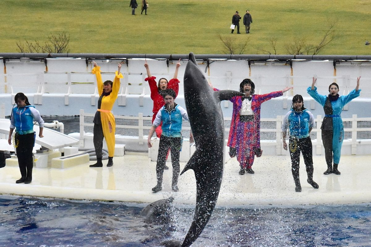 1日目午前:大人にも子どもにも大人気の「京都水族館」へ