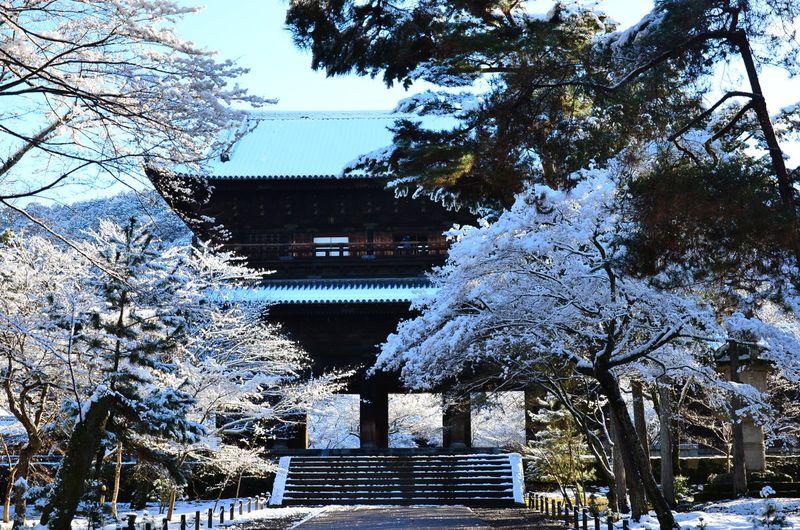 冬の京旅「哲学の道」散策〜南禅寺から永観堂、銀閣寺へ〜