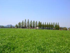 """兵庫県・加西市で""""リトル北海道""""の風景に会いに行こう!"""