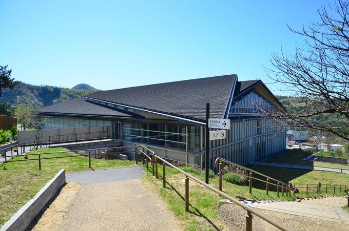 鳥取砂丘「砂の美術館」とは