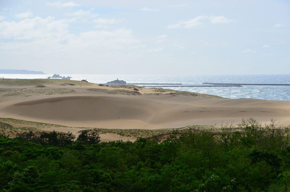 展望広場からは鳥取砂丘の雄大な景観も