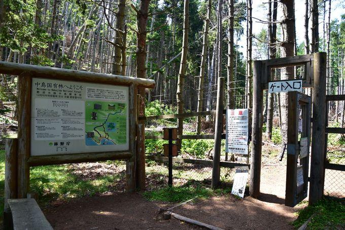 森林博物館の入山許可ノートにサインしてトレッキングに出発