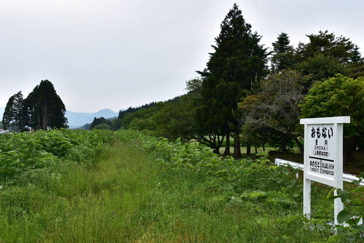 草木に埋もれる旧松前線の重内駅跡