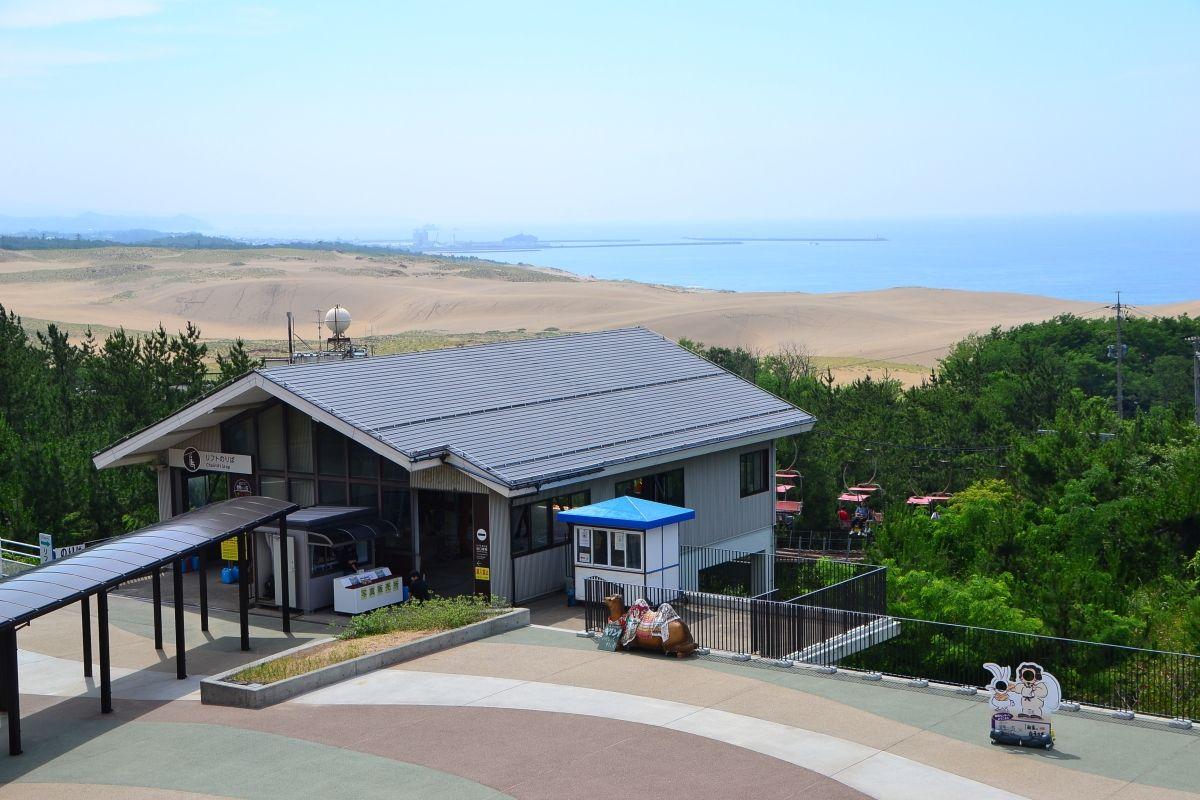 1日目午後:鳥取砂丘でラクダライド体験や砂の美術館、梨狩りも