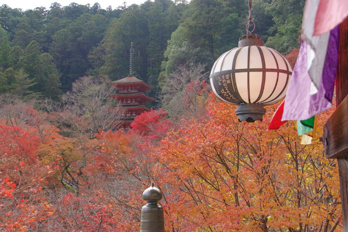 本堂の前にせり出す舞台は長谷寺有数のフォトスポット
