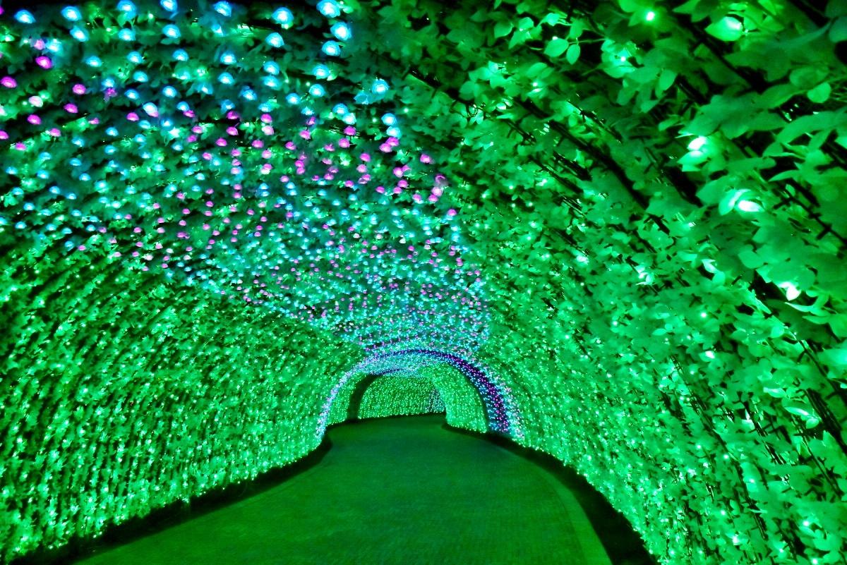 もうひとつの光のトンネル「バラ」で幸せな気分に浸ろう