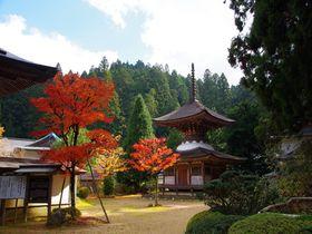 和歌山・高野山「金剛三昧院」は恋愛成就のパワースポット