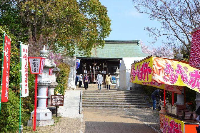大和郡山お城まつりでは特産の「金魚品評会・品種展」も