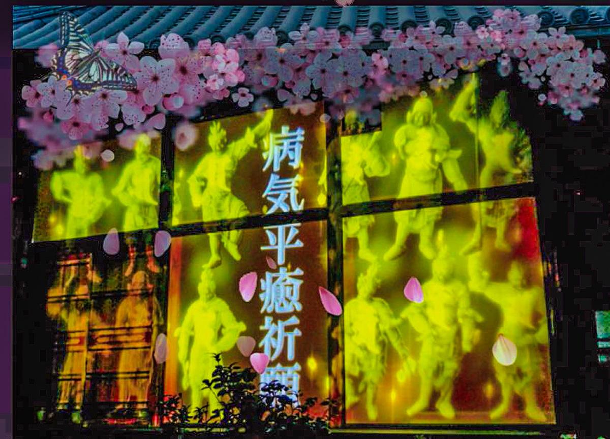 日本最古の写経場にも光の桜が舞い降りる