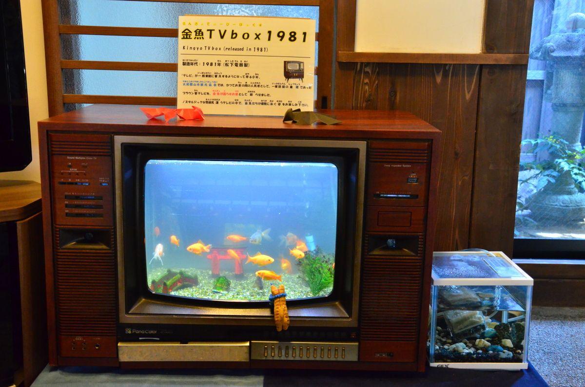 膨大な数の金魚コレクション・箱本館「紺屋」