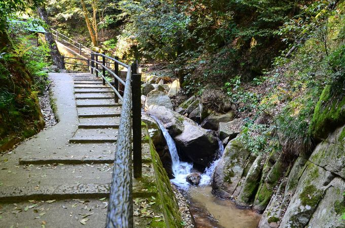 京都府で唯一 日本の滝百選「金引の滝」
