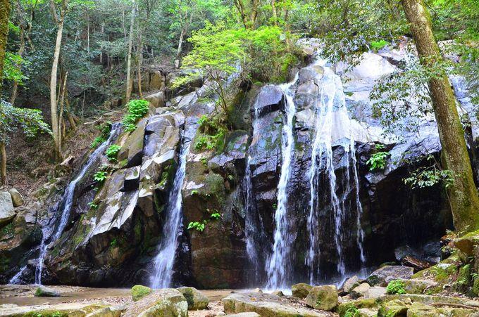 天然の「滝壺シャワー」で滝遊びも楽しい
