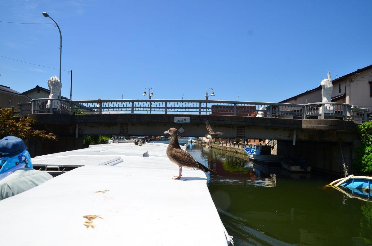 内川散策の拠点となる「川の駅 新湊」からも乗船・下船が可能