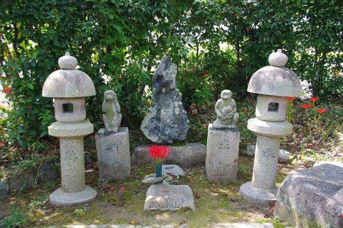 本薬師寺跡は、西ノ京薬師寺の前身