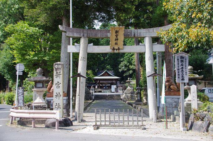 5.新宮神社