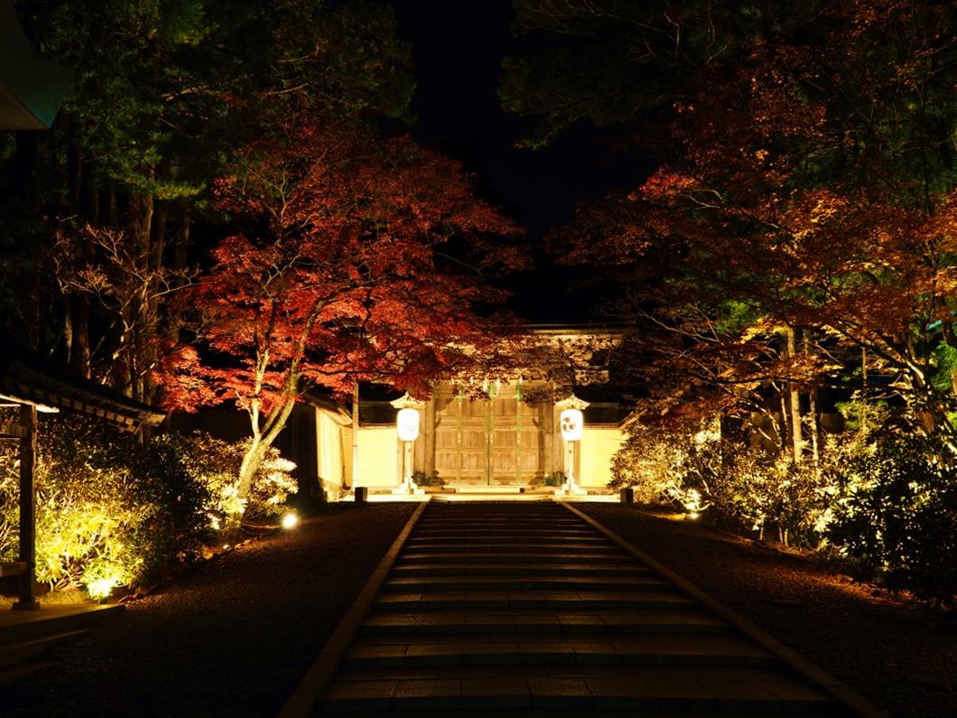 紅葉シーズンは「蛇腹道」のライトアップが美しい
