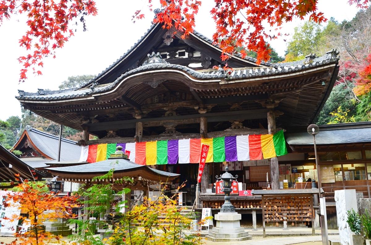 岡寺の開祖の「義淵僧正」は、当時の日本仏教界の第一人者