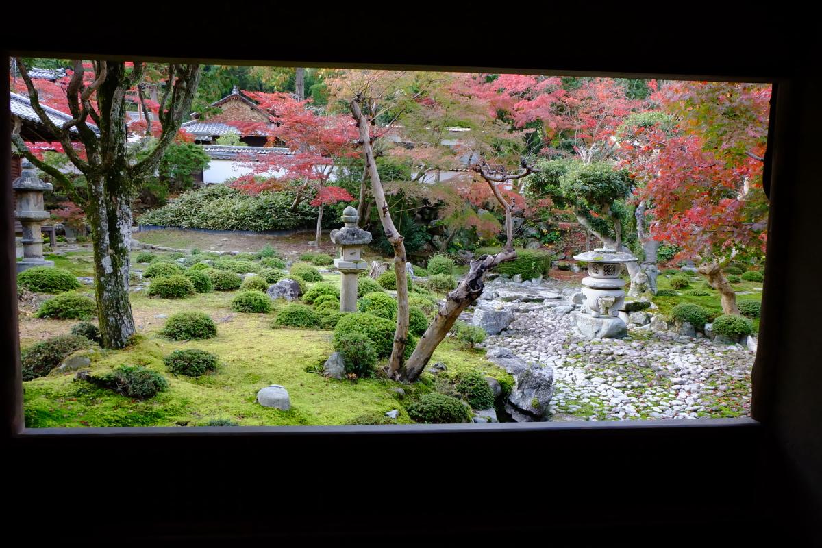秋の枯山水庭園のモミジはため息が出る美しさ