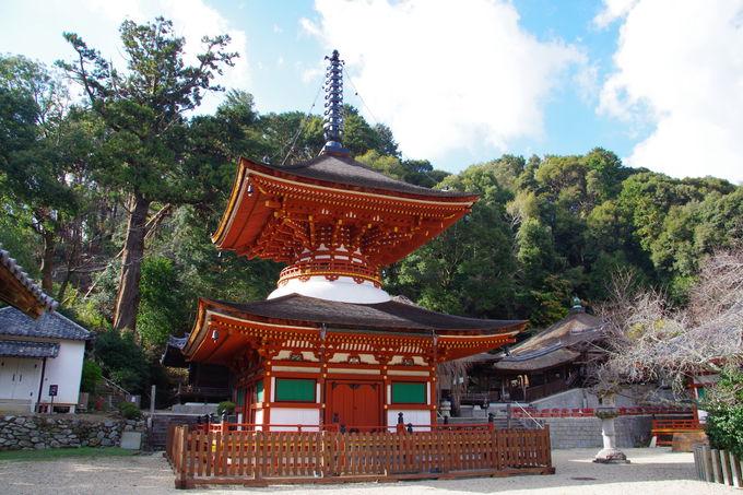 奥河内屈指の紅葉の名所「天野山金剛寺」