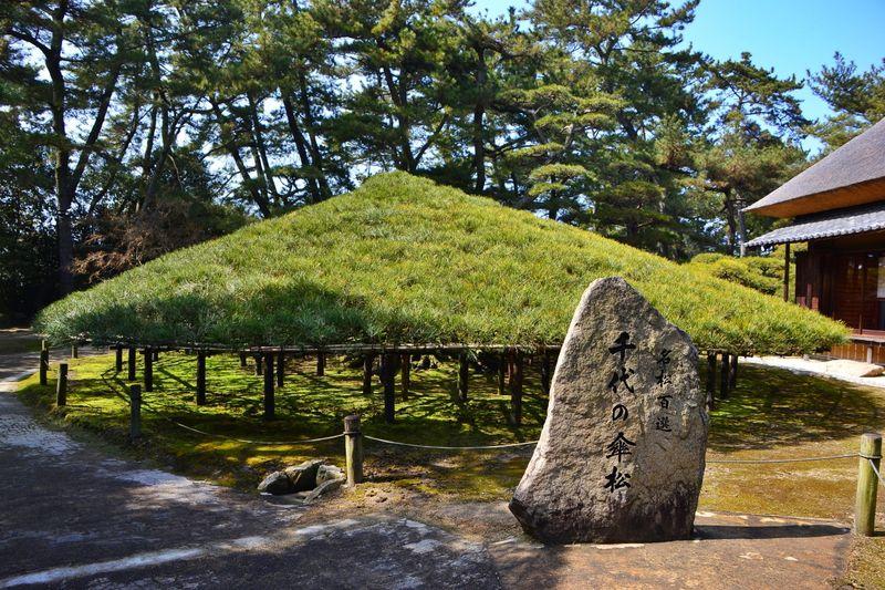 香川県「中津万象園・丸亀美術館」は1万5千坪の回遊式大名庭園