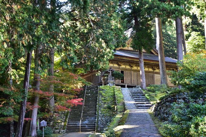 福井県内で唯一国宝に指定されている明通寺の本堂と三重塔