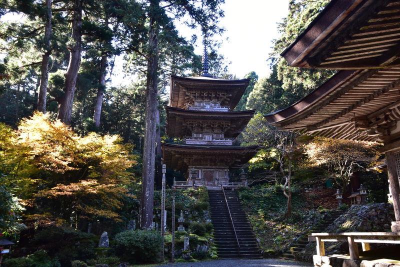 海のある奈良!福井県・若狭「小浜」で国宝と名勝庭園を巡ろう