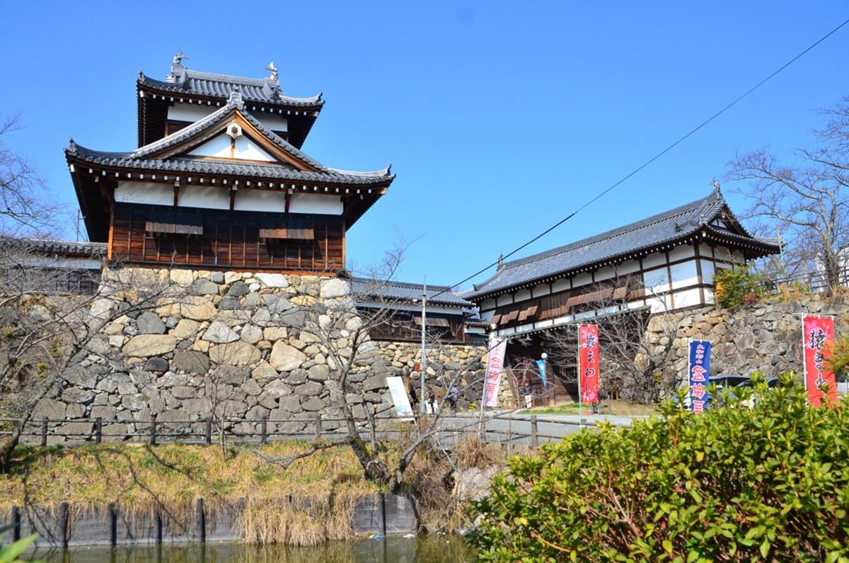 「柳沢吉里」は金魚の養殖のほかに、紅梅や桜も補植した名君